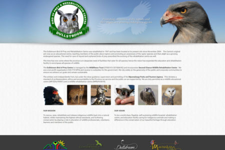 Birds of Prey - Website Design - Nelspruit and White River - Mpumalanga